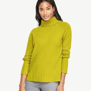 Ann Taylor Sweater Turtleneck